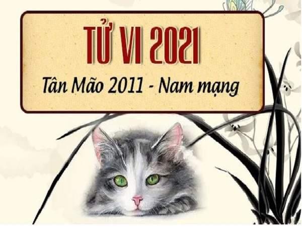 Tử vi tuổi Tân Mão năm 2021 nam mạng