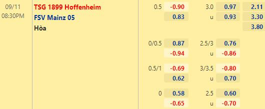 Tỷ lệ kèo bóng đá giữa Hoffenheim vs Mainz